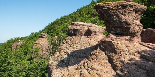 Babás-szerkövek, a megkövült nászmenet a Jakab-hegy déli oldalában