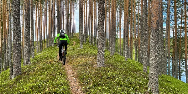 Maastopyöräilijä Susitaipaleen harjumaisemissa
