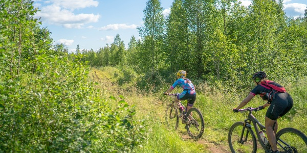 Ylläs-Levi mtb trail