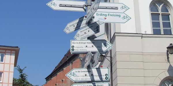 """Schilderbaum in Erding, Schrannenplatz  """"Borgsdenkmal"""""""