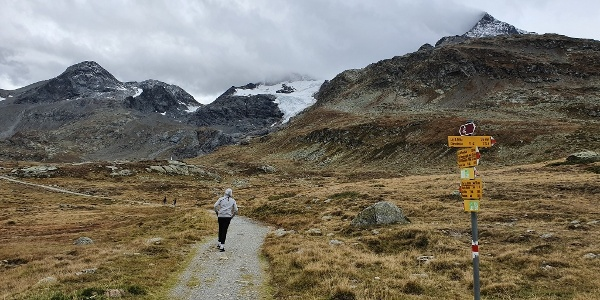 Wide path under the Bernina Mountains