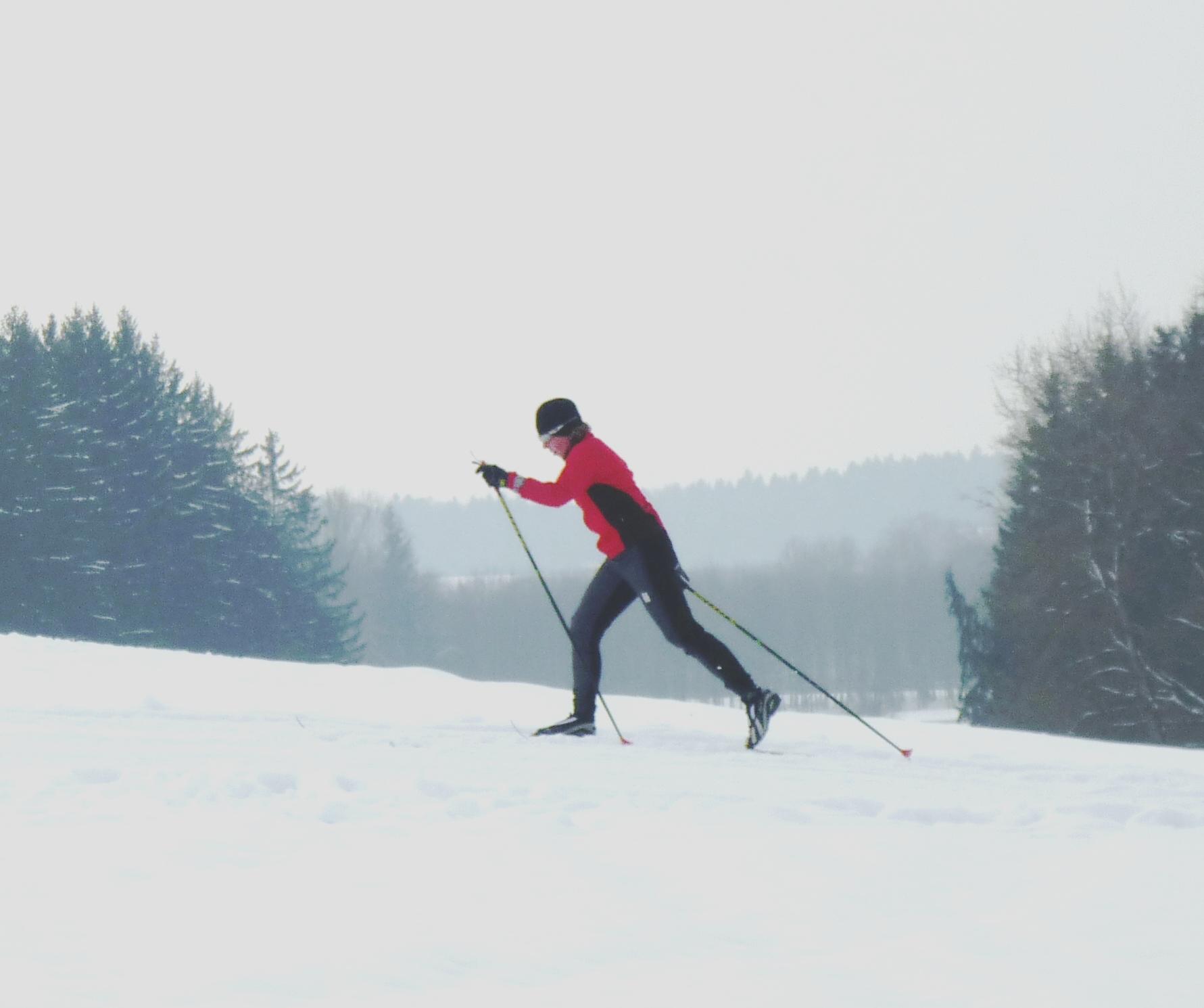Langlauf in Zellerreit