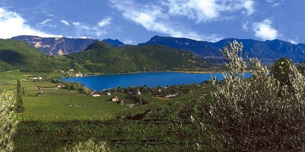 Der Kalterer See inmitten von Weinbergen