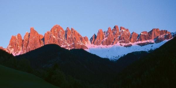 Die Geisler Spitzen im Abendlicht. Das rötliche Alpenglühen ist weltbekannt, zumindest in Südtirol.