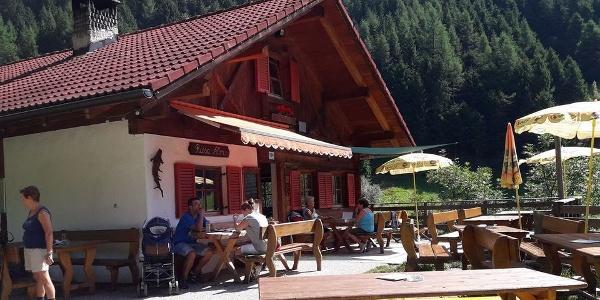 Willkommen auf der Kräuteralm Riesa oberhalb von Luttach im Ahrntal