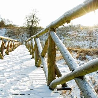 Fußgängerbrücke über das Biotop Mühlteich in Allrode