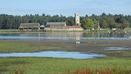 Great Livermere - A mere view