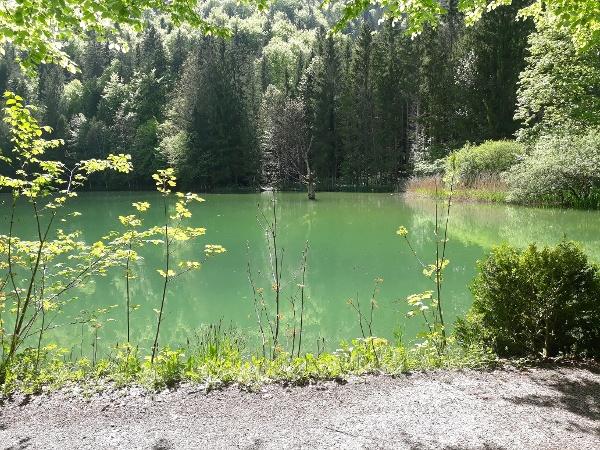 Rudersburger See