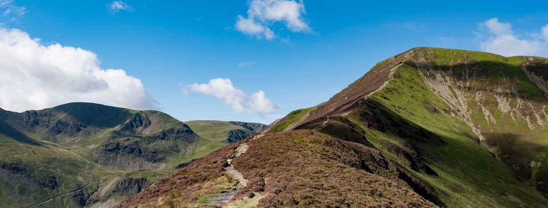 Ascent of Grizedale Pike