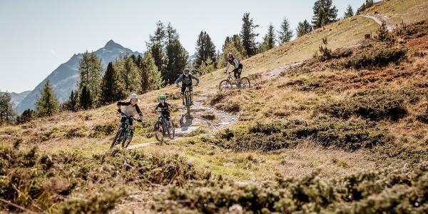 Bartigs Bödele Trail