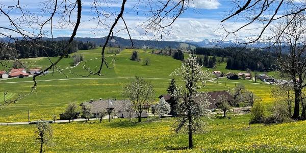 Unterwegs im Westallgäu