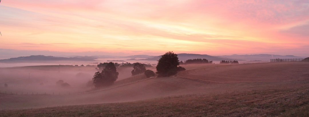 Morgenwanderung im Saarland