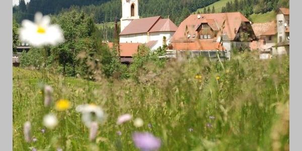 St. Johann am Tauern, Pfarrkirche • Kirche »