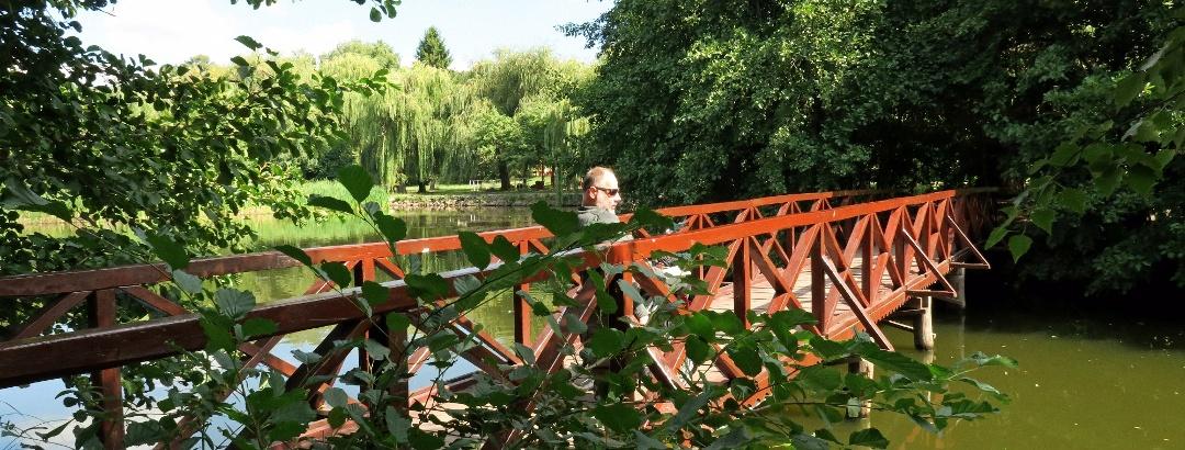 A Sás-tó hídjai is jól járhatóak kerekesszékkel