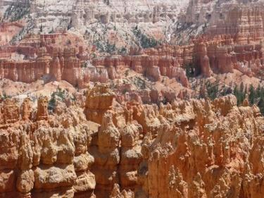 Felssäulen im Bryce Canyon