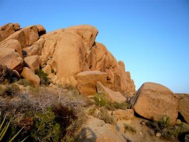 Felsen im Yoshua Tree Nationalpark