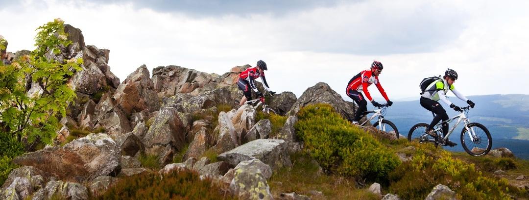 Mountainbiker im Harz