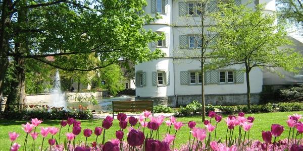 Schlosspark Bad Rappenau