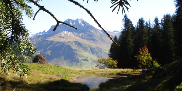 Hochmoorwanderung St. Antönien Grossried, Soppaseeli