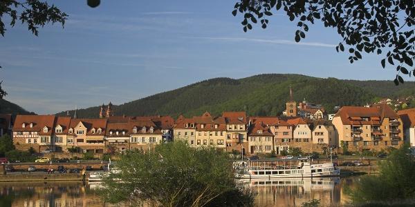 Neckarsteig: Hirschhorn bis Eberbach