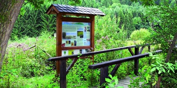 Feuchtwiese im Sahrbachtal