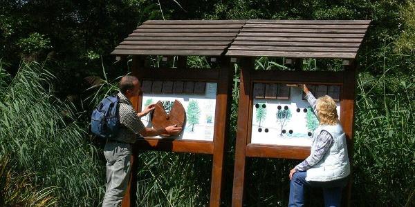 Wassererlebnispfad im Hahnenbachtal, eine Station