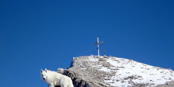 die letzten Meter auf dem Rücken zum Gipfel der hinteren Bachofenspitze