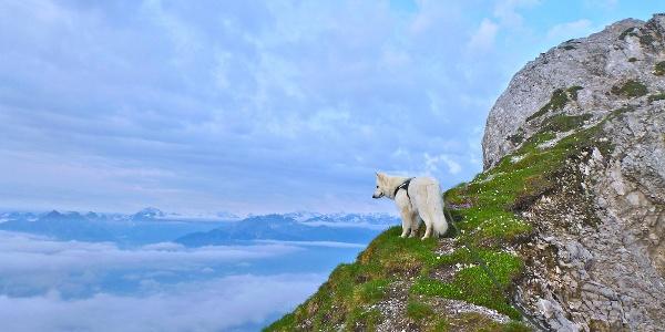 Steig Richtung Gipfel mit Blick ins Inntal