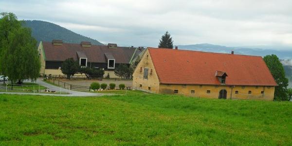 Außenansicht Rheintalerhof - Lipizzanergestüt Piber