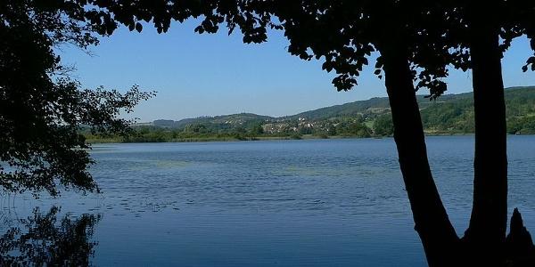 Am Ufer des Mindelsees