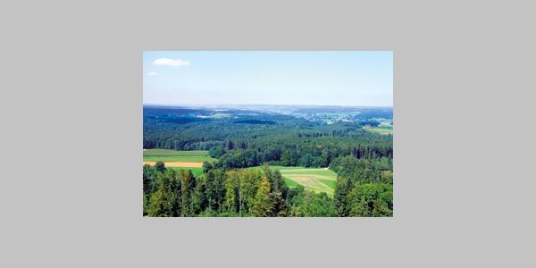 Blick vom Altenbergturm