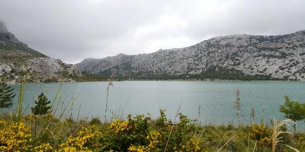 Der beeindruckende Cúber-Stausee inmitten des mallorquinischen Naturidylls