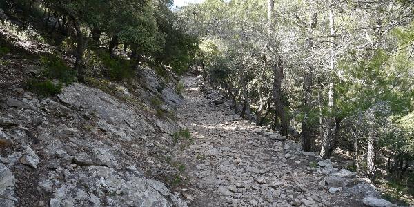 Anstieg über Valldemossa