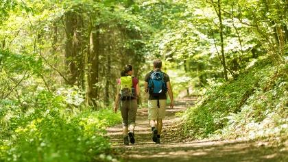 Idyllischer Waldweg Wäller Tour Eisenbachtal