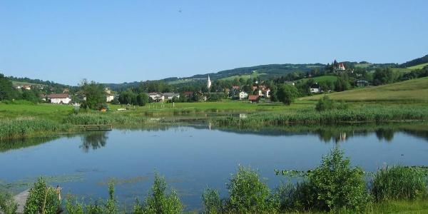 Teich in Krumbach | Bucklige Welt