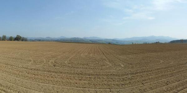Panorama über die Felder kurz vor Waldneukirchen.