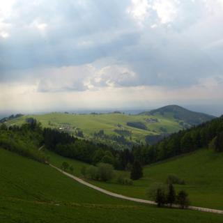 Kleine Straßen im Schwarzwald
