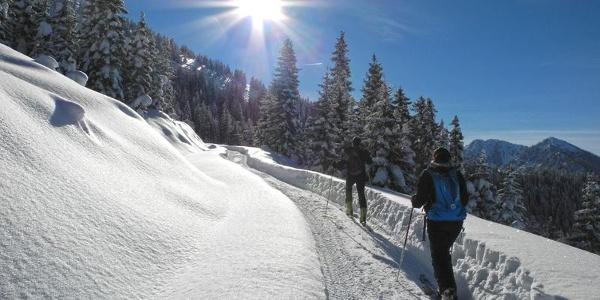 Immer genügend Schnee zum Winterwandern