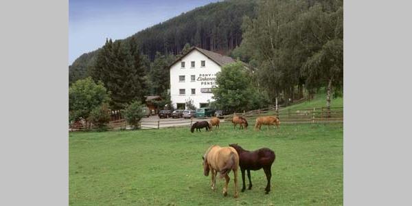 Gasthof Linkenmühle