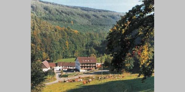 Linkenmühle