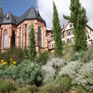 Bibelgarten St Martin