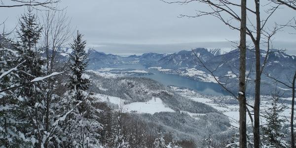 Der schmale Durchschlupf oberhalb der Laimeralmwiese (27.1.2012)