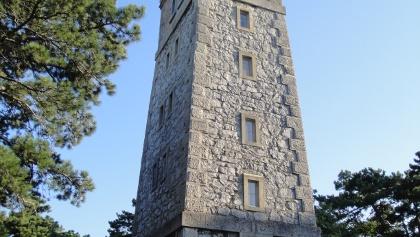 Der Harzbergturm