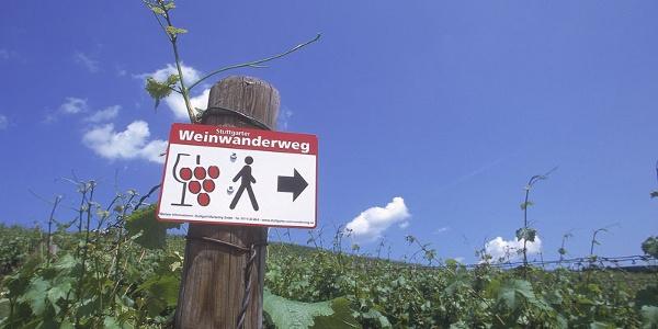 Weinwanderweg Rohracker