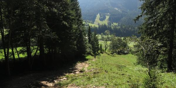 Aufstieg vom Johnsbachtal