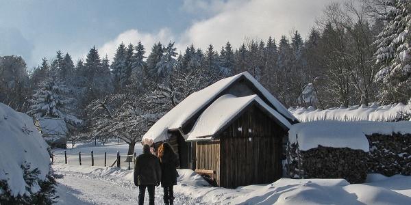Winter-Wanderweg in der Mannenbachheide