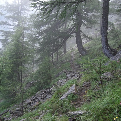 Am Ziroger Höhenweg