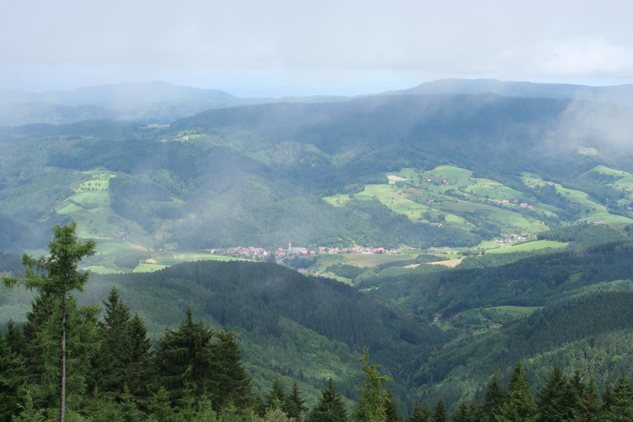 Blick vom Aussichtsturm am Brandenkopf auf Oberharmersbach