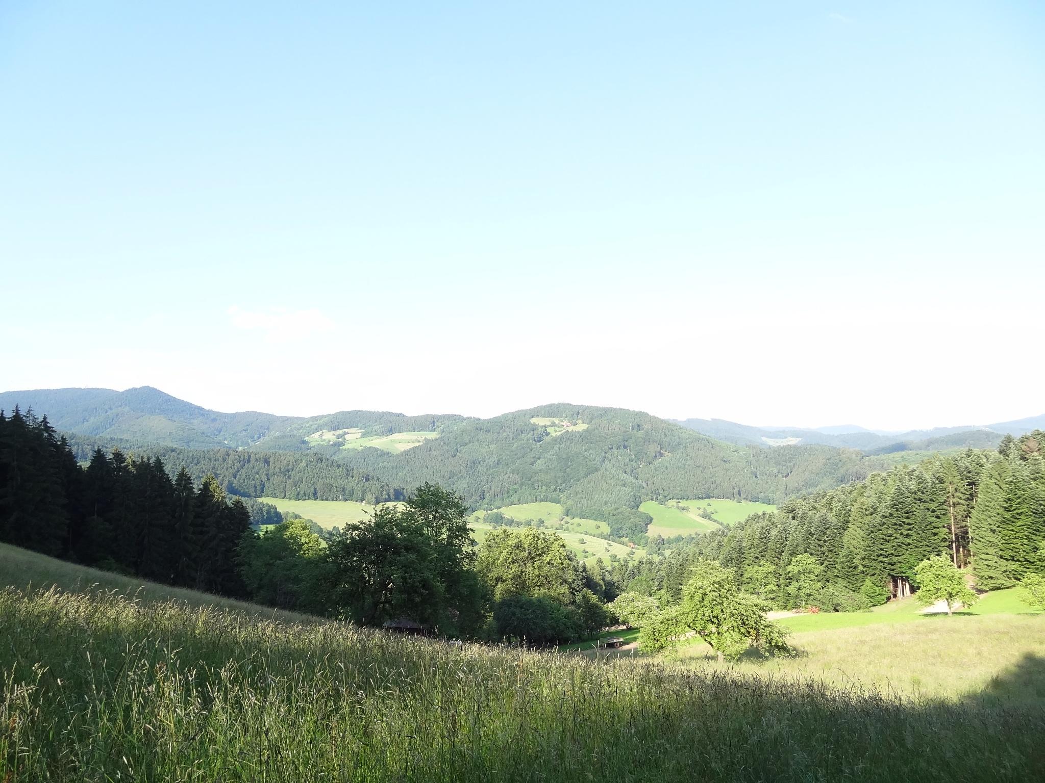 Fischerbacher Panorama