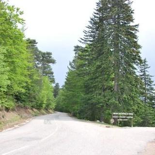 Col de Verde